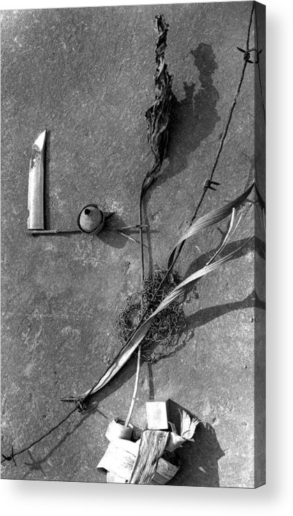 Still Life Acrylic Print featuring the photograph Still Forms by Ted M Tubbs