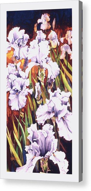 Irises White Purple Warm Leaves Rust Orange Flowers Iris Flower Sunset Sunrise Field Orange Acrylic Print featuring the painting Summertime Irises by Mike Hill