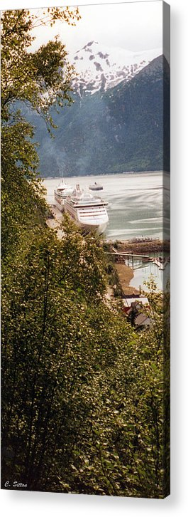 Cruise Photographs Acrylic Print featuring the photograph Juneau Alaska by C Sitton