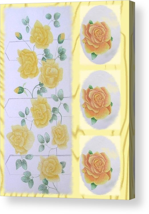 Rose Acrylic Print featuring the drawing Climbing Yellow Roses by Dusty Reed