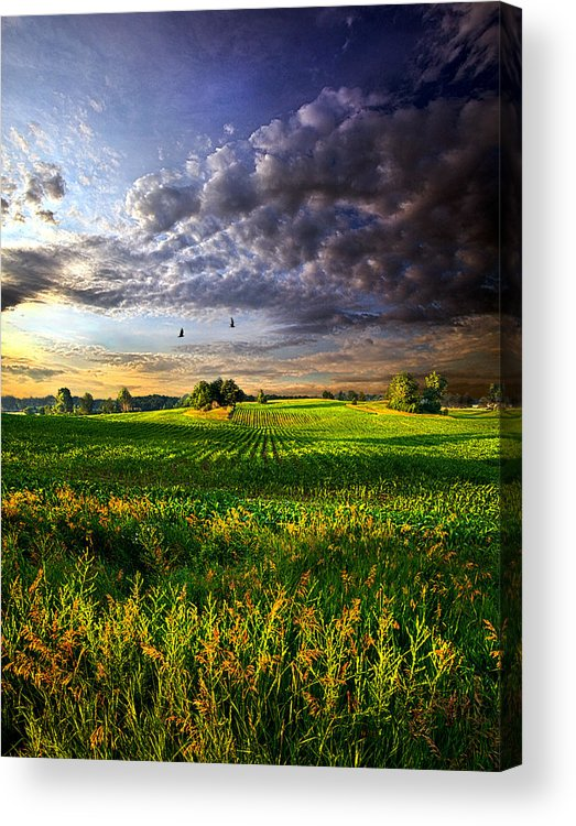 Horizons Acrylic Print featuring the photograph All I Need by Phil Koch