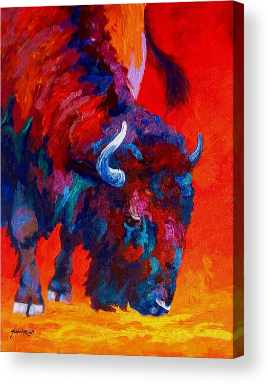 Bison Acrylic Print featuring the painting Grazing Bison by Marion Rose