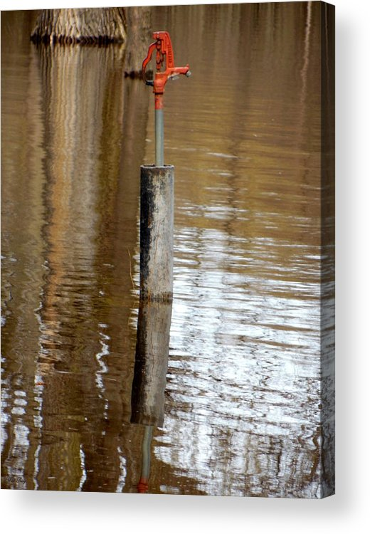 Water Pump Acrylic Print featuring the photograph Paradox by Wild Thing