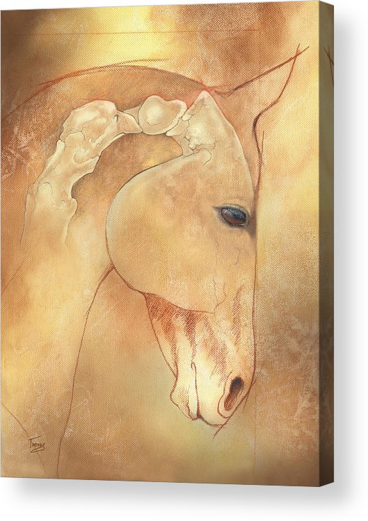Atlas Acrylic Print featuring the painting Poll Meet Atlas Axis by Catherine Twomey