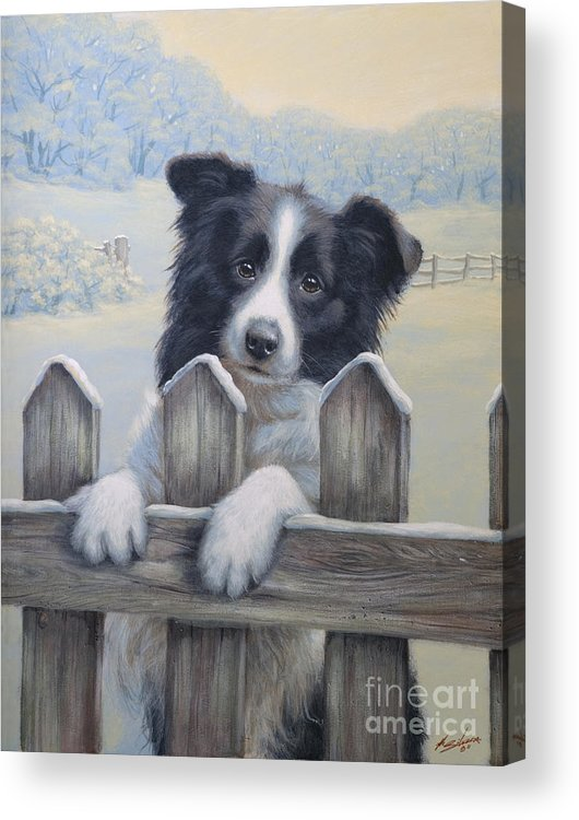 Dog Paintings Acrylic Print featuring the painting Ready For Work by John Silver