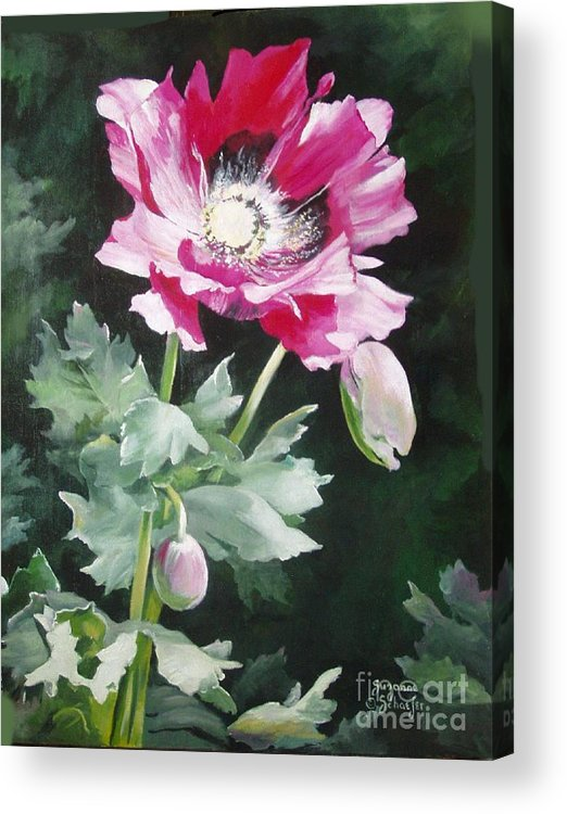 Poppy Acrylic Print featuring the painting Shining Star Poppy by Suzanne Schaefer