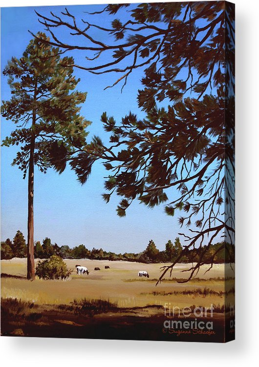 Scene Acrylic Print featuring the painting Summer Serenity by Suzanne Schaefer