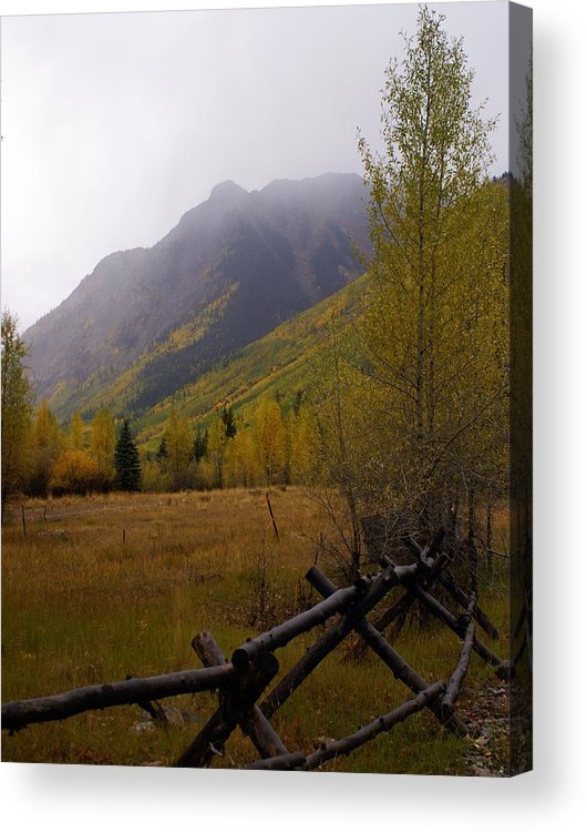 Colorado Acrylic Print featuring the photograph Along The Alpine Loop by Marty Koch