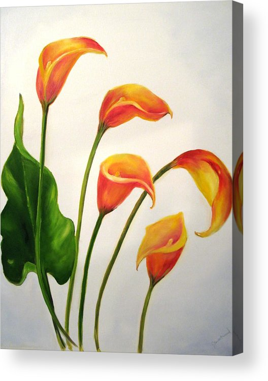 Calla Lilies Acrylic Print featuring the painting Calla Lilies by Carol Sweetwood