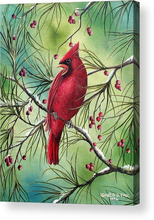 Cardinal Acrylic Print featuring the painting Cardinal by David G Paul