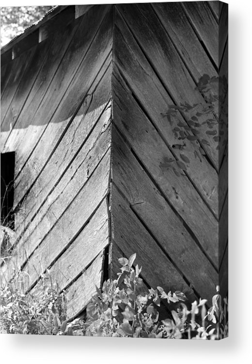 Wood Acrylic Print featuring the photograph Diagonals by Curtis J Neeley Jr