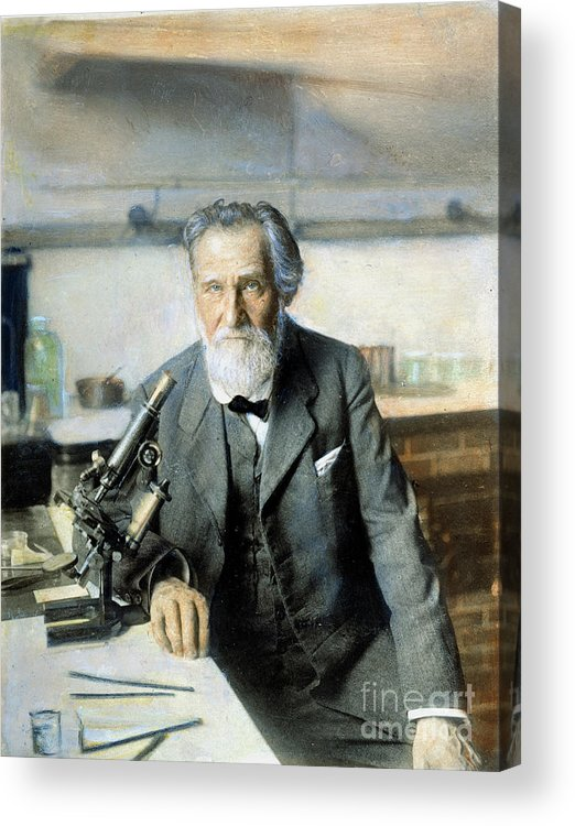 20th Century Acrylic Print featuring the photograph Elie Metchnikoff (1845-1916) by Granger