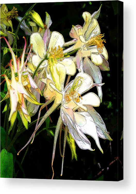 Flowers Acrylic Print featuring the digital art Flower St by John Toxey