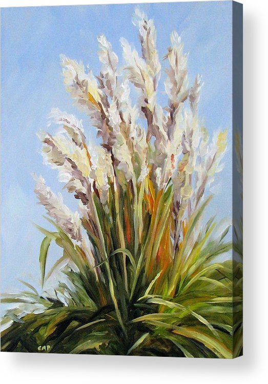 Daily Painting Acrylic Print featuring the painting Grand Pampas by Cheryl Pass