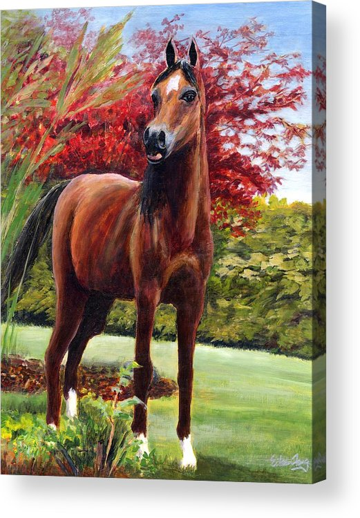 Horse Acrylic Print featuring the painting Horse Portrait by Eileen Fong