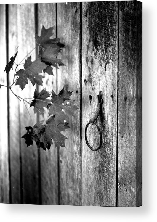 Acrylic Print featuring the photograph Japton Door by Curtis J Neeley Jr