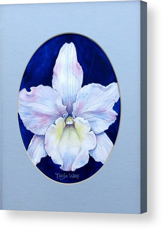 Floral Acrylic Print featuring the painting Lady In White by Tanja Ware