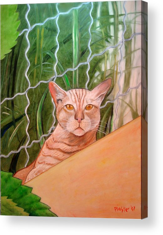 Cat Acrylic Print featuring the painting Miami Lewie by Scott Plaster
