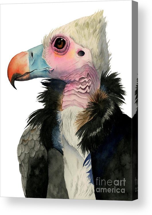 White-headed Vulture Acrylic Print featuring the painting Odd Beauty by NamiBear