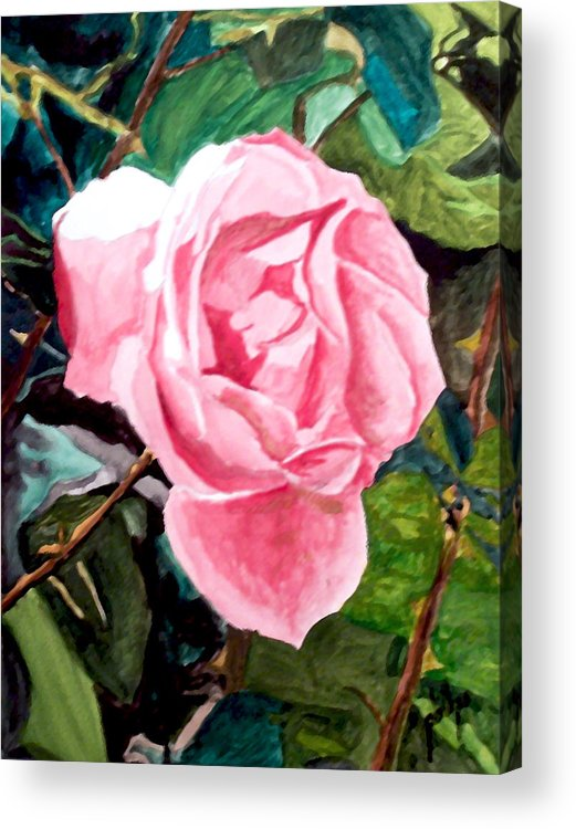 Rose Acrylic Print featuring the painting September Rose by Jim Phillips