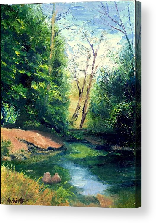 Landscape Acrylic Print featuring the painting Summer At Storm by Gail Kirtz