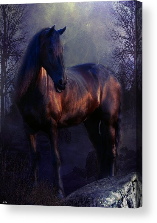 Equine Acrylic Print featuring the mixed media The Wild Mare by G Berry