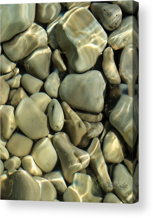 Still Life Acrylic Print featuring the photograph Tide Pool by Chuck Kugler