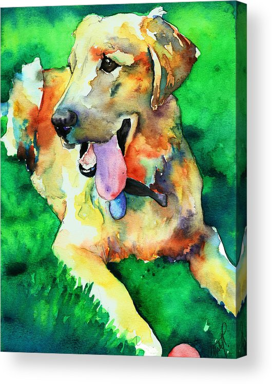 Yellow Lab Acrylic Print featuring the painting Yellow Labrador by Christy Freeman