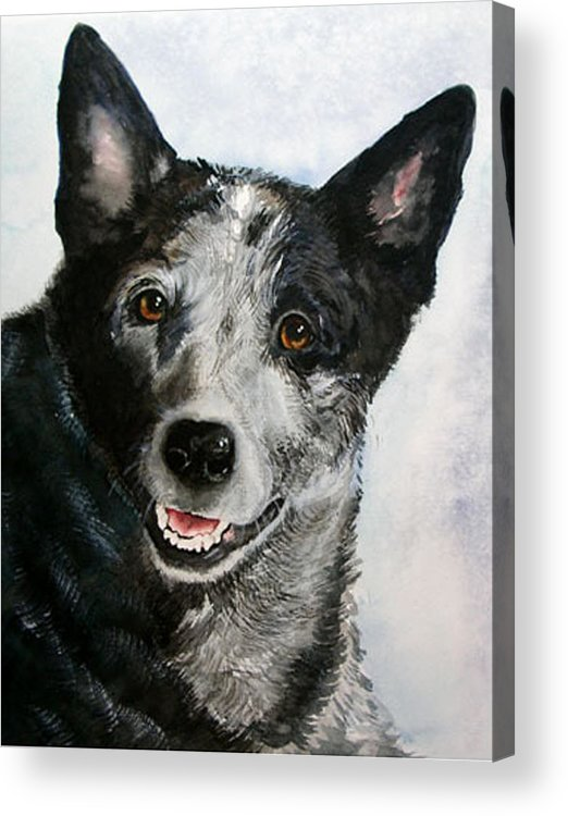 Canine Acrylic Print featuring the painting Kellie by Gina Hall