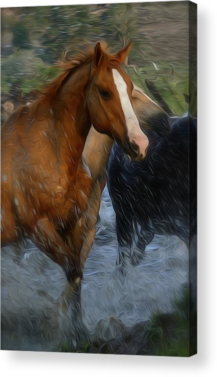 Horse Acrylic Print featuring the photograph Running Wild Painting by Clyn Robinson
