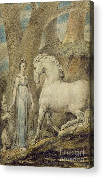 Woodland Acrylic Print featuring the painting The Horse by William Blake
