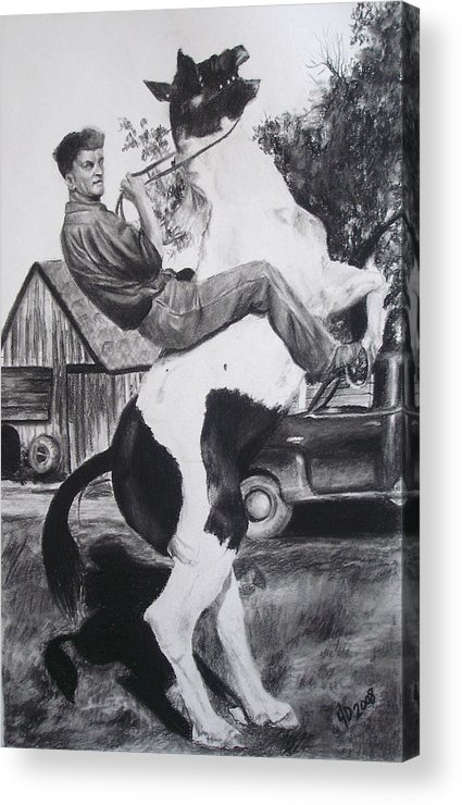 Horse Acrylic Print featuring the drawing Untitled by Darcie Duranceau
