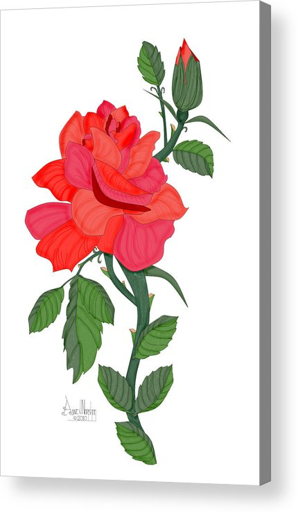 Red Rose Acrylic Print featuring the painting Calypso Rose by Anne Norskog