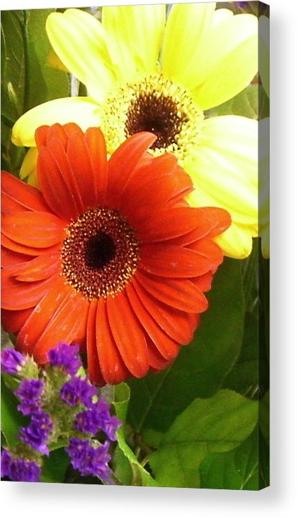 Flower Acrylic Print featuring the photograph Hide And Seek by Kimberly Morin