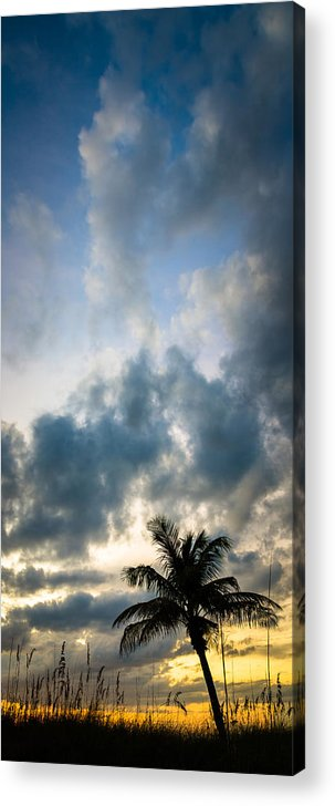 Florida Acrylic Print featuring the photograph Florida Fire by Clay Townsend