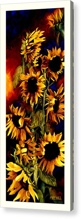 Sunflower Sun Flower Yellow Warm Cool Tall Narrow Colors Acrylic Print featuring the painting I'll Follow The Sun by Mike Hill