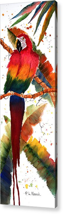 Macaw Acrylic Print featuring the painting Macaw Feathers by Patricia Novack