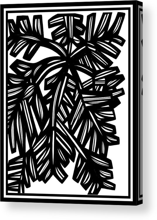 Black And White Acrylic Print featuring the drawing Comrie Plant Leaves Black And White by Eddie Alfaro