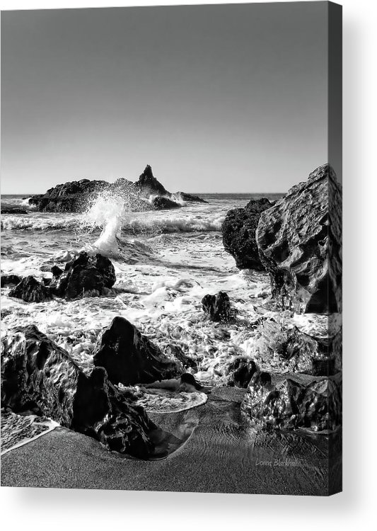 Ocean Acrylic Print featuring the photograph Another World by Donna Blackhall