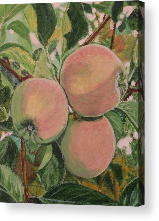 Apple Acrylic Print featuring the painting Apples by Vera Lysenko