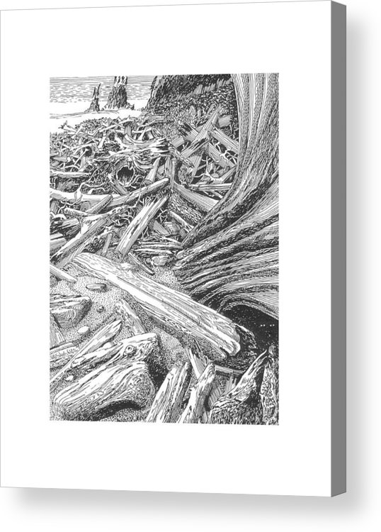 Find The Critter? Acrylic Print featuring the drawing Critter In The Driftwood by Jack Pumphrey