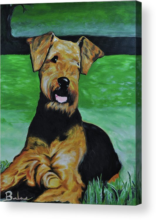 Airedale Art Acrylic Print featuring the painting No Worries by Ruben Barbosa