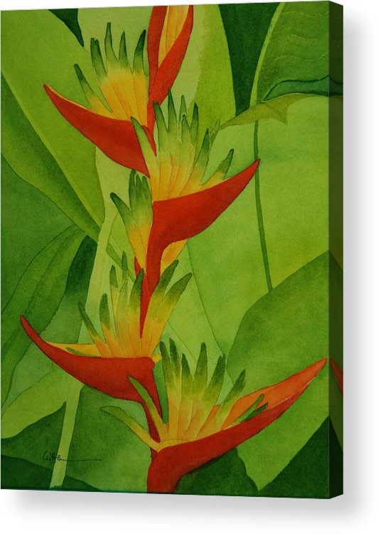 Heliconia Acrylic Print featuring the painting Rojo Sobre Verde by Diane Cutter