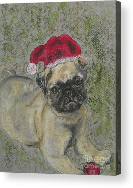 Pug Acrylic Print featuring the drawing Santa's Little Pugster by Cori Solomon