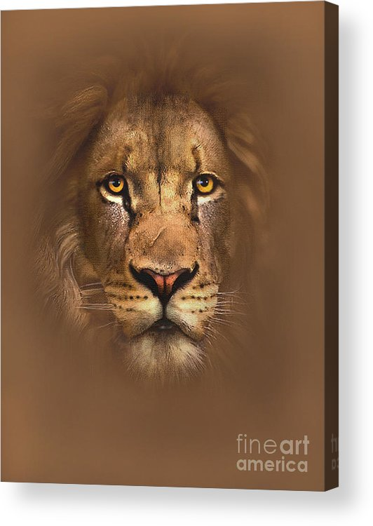 Lion Acrylic Print featuring the painting Scarface Lion by Robert Foster
