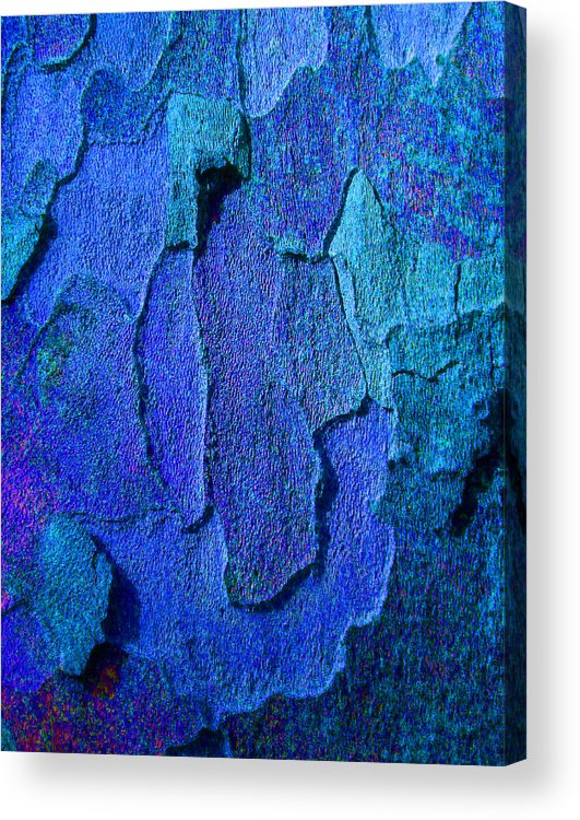 Bark Acrylic Print featuring the photograph Winter London Plane Tree Abstract 4 by Margaret Saheed