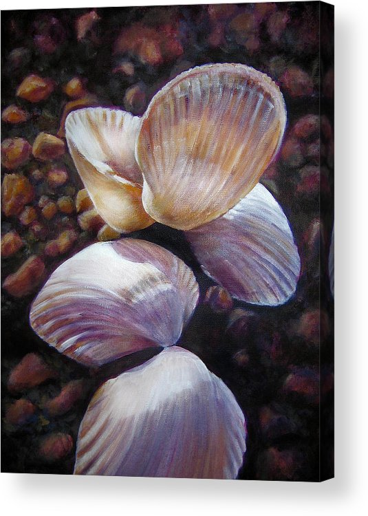 Painting Acrylic Print featuring the painting Ane's Shells by Fiona Jack