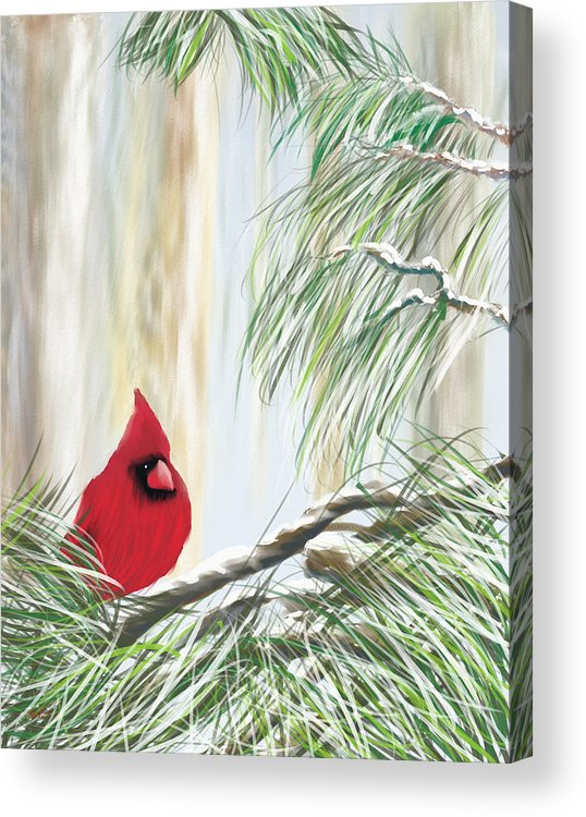 Cardnial Acrylic Print featuring the painting Baby It's Cold Outside by Harry Dusenberg