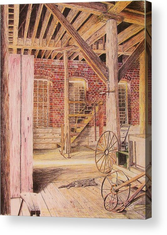Cat Acrylic Print featuring the drawing Barn Cat by Dan Hausel