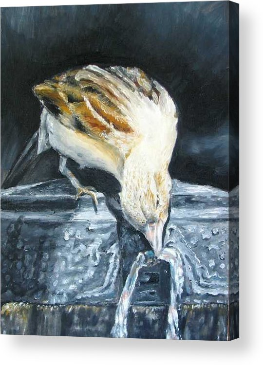 Oil Painting On Canvas Acrylic Print featuring the painting Bird Original Oil Painting by Natalja Picugina